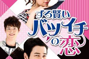 ずる賢いバツイチの恋13話の動画を日本語字幕で無料視聴するには?