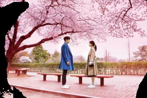 むやみに切なくあらす19話と動画を日本語字幕で無料視聴する方法