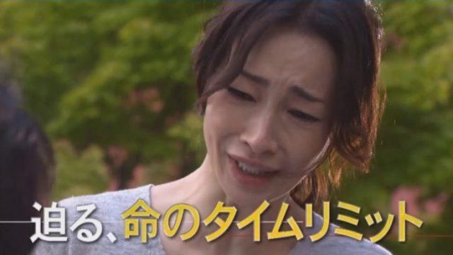 フジテレビ ドラマ 再放送 予定 夕方