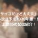 『サイコだけど大丈夫』日本放送予定2020年版!地上波BSの配信紹介!