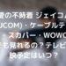 愛の不時着 ジェイコム(JCOM)・ケーブルテレビ・スカパー・WOWOWでも見れるの?テレビ放映予定はいつ?