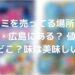 地球グミを売ってる場所・お店は福岡・広島にある? 値段最安値はどこ?味は美味しいの?